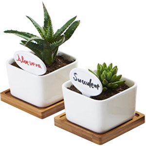 White Ceramic Small Square Succulent Cactus Flower Plant Pot with Bamboo Tray