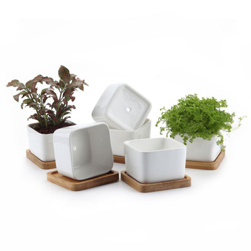 White Square Ceramic Flower Pot With Bamboo Tray Garden Mini Pot Succulent Planter