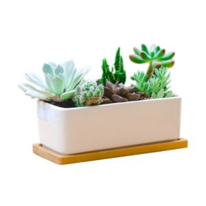 Rectangle White Ceramic Succulent Planter Pots