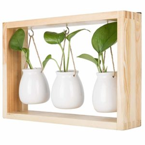 3 Pieces Ceramic Porcelain Wall Hanging Pot With Wooden Display Holder